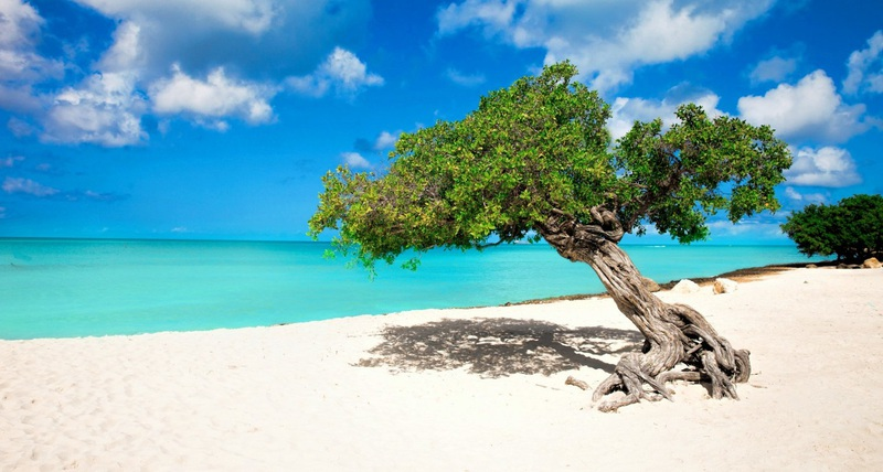 Aruba Goes Green