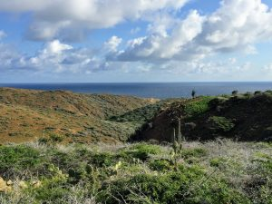 Things To Do Aruba - Arikok National Park