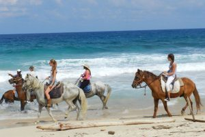 Things To Do Aruba - Horseback Riding