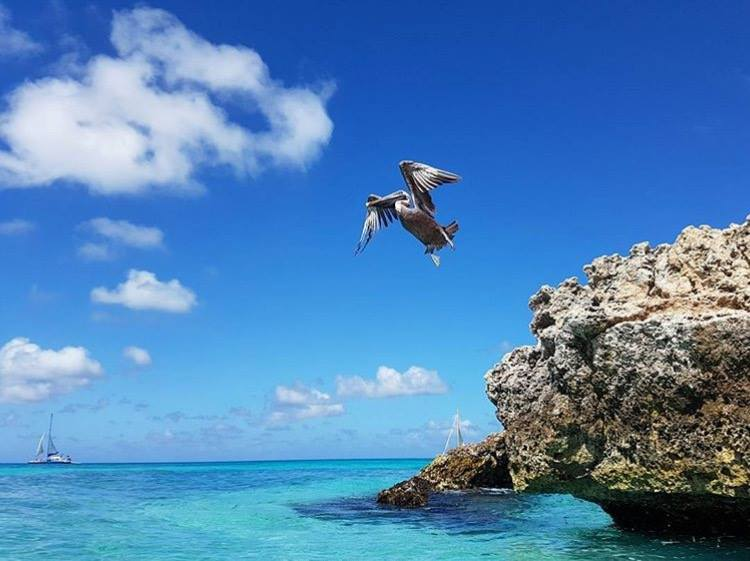 9 Reasons Why Aruba is the Happiest Island of Them All!