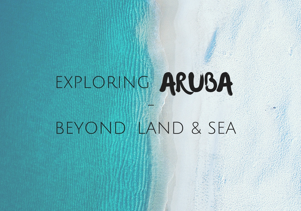 The Diverse Desert Island That is Aruba