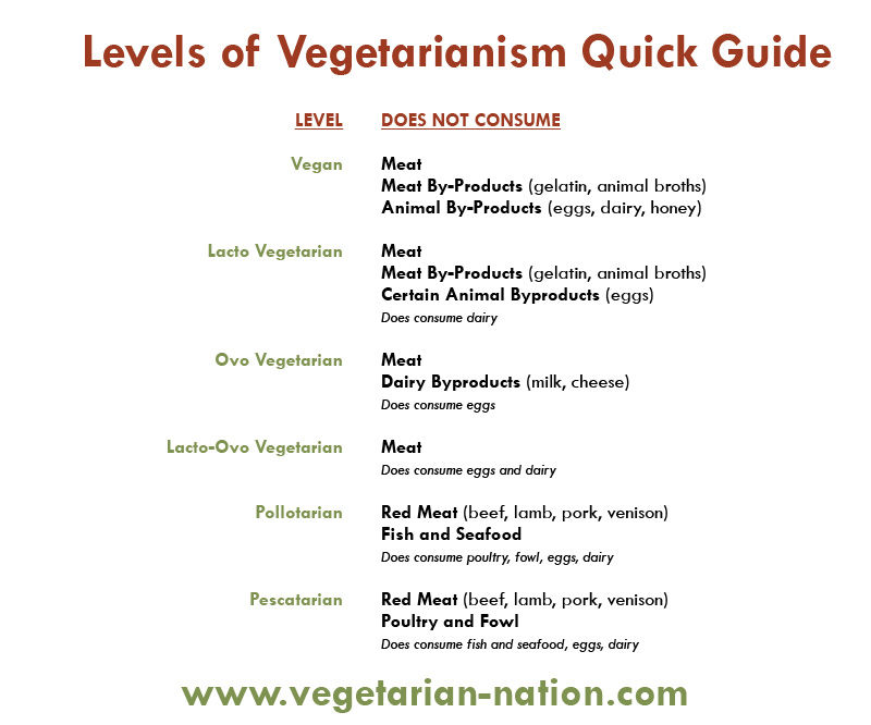 levels-chart-by-vegetarian-nation-graphic-in-visitaruba-blog-veggie-friendly-options-inaruba