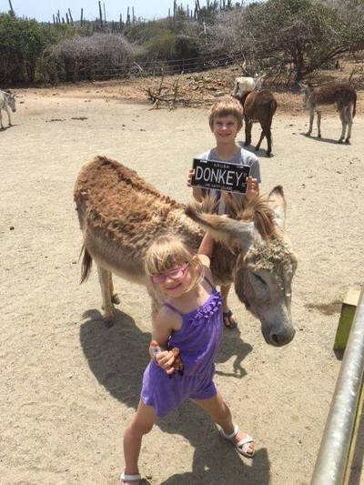 donkey-sanctuary-aruba-donkeys-and-kids-photo-by-donkeysanctuaryaruba-visitaruba