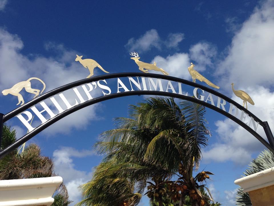 Philip's Celebrates Animal Day!