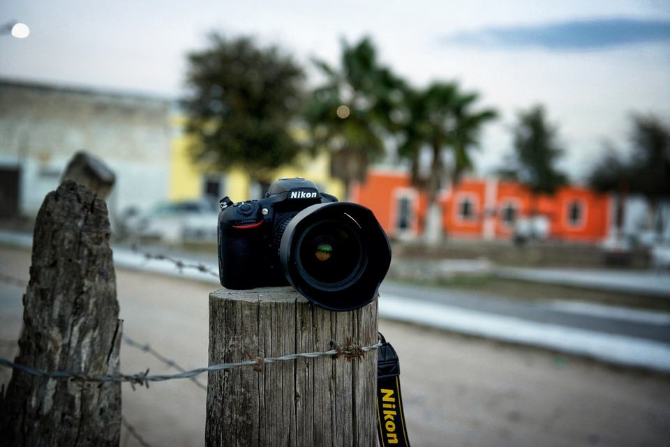 camera-on-wooden-pole-in-front-of-palm-trees-and-colorful-buildings-aruba