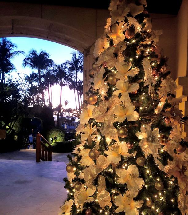 photo by Hyatt Regency Aruba Resort and Casino - Christmas Tree-kerstboom