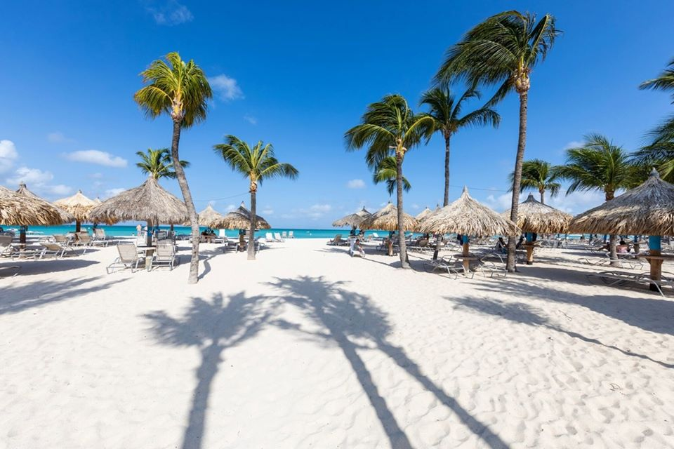 Sending Some Aruba Sunshine Your Way