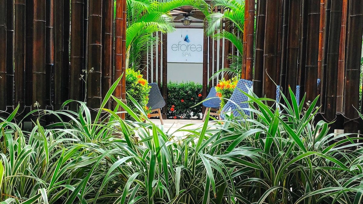 The New Experience at Hilton's EFOREA Spa is Simply Zenful