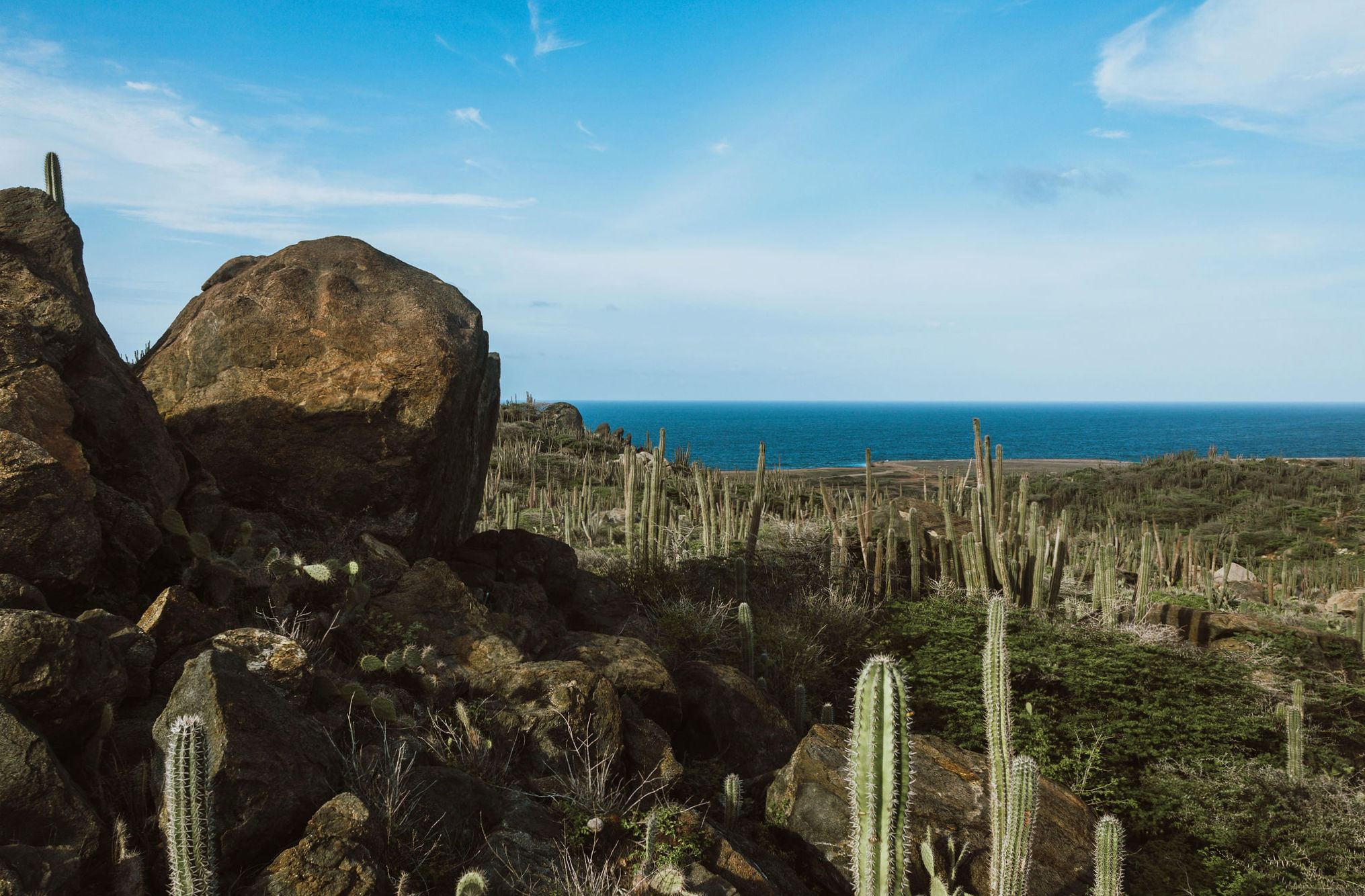 Explore The Beauty Of Caribbean: Where Is Aruba Located? Map And Geography Of Our Caribbean