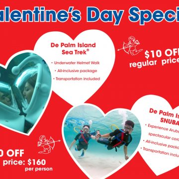 De Palm Tours: Romantic offers for Valentine's Day