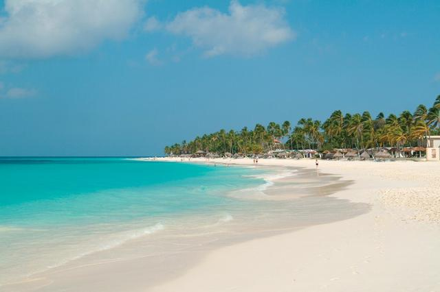 Divi Resorts Aruba honored with Silver Earthcheck Certification ...