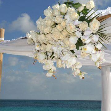 Celebrate New Beginnings with Divi & Tamarijn Aruba All Inclusives Wedding & Honeymoon Packages