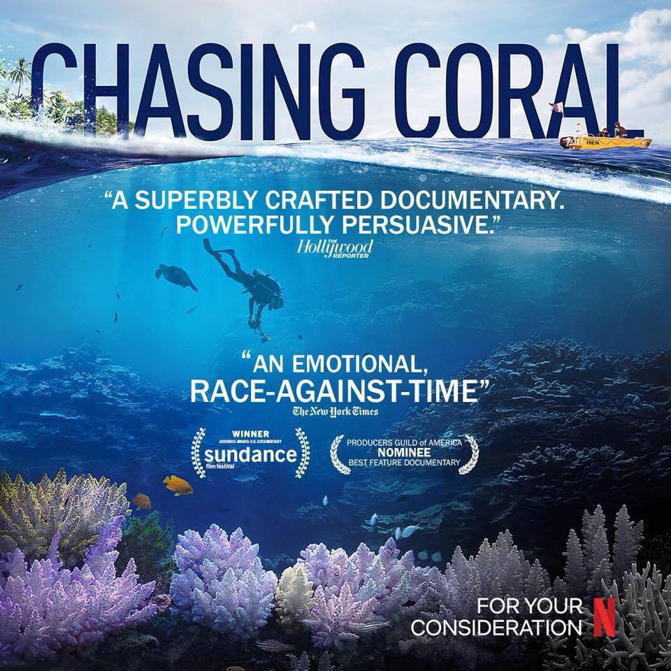VisitAruba Presents an Open Invitation to Aruba's Chasing Coral Screening & Information Evening