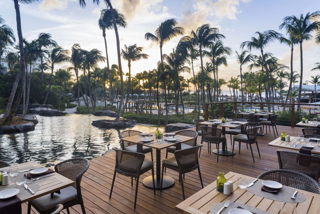 The Hilton Aruba Caribbean Resort & Casino hosts a Traditional Thanksgiving Dinner