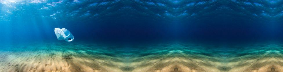VisitAruba-Home-Slideshow-Environmental-Awareness-from-Aruba-blog-by-Megan-Rojer.jpg
