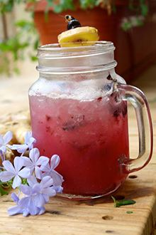 Blueberry Ginger Fizz