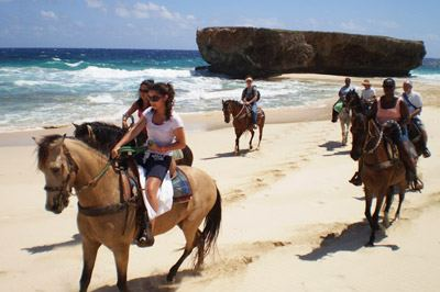 VisitAruba Plus Land Activity Offers